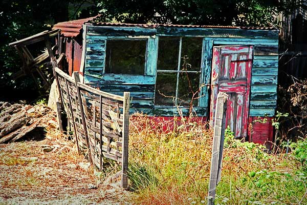 Shed From A Death Bed - click for previous